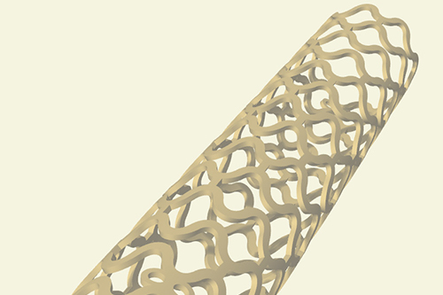 £1.1 million project to develop new biodegradable stents